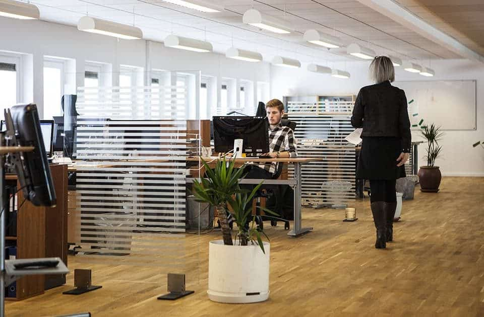Spacious office interior layout