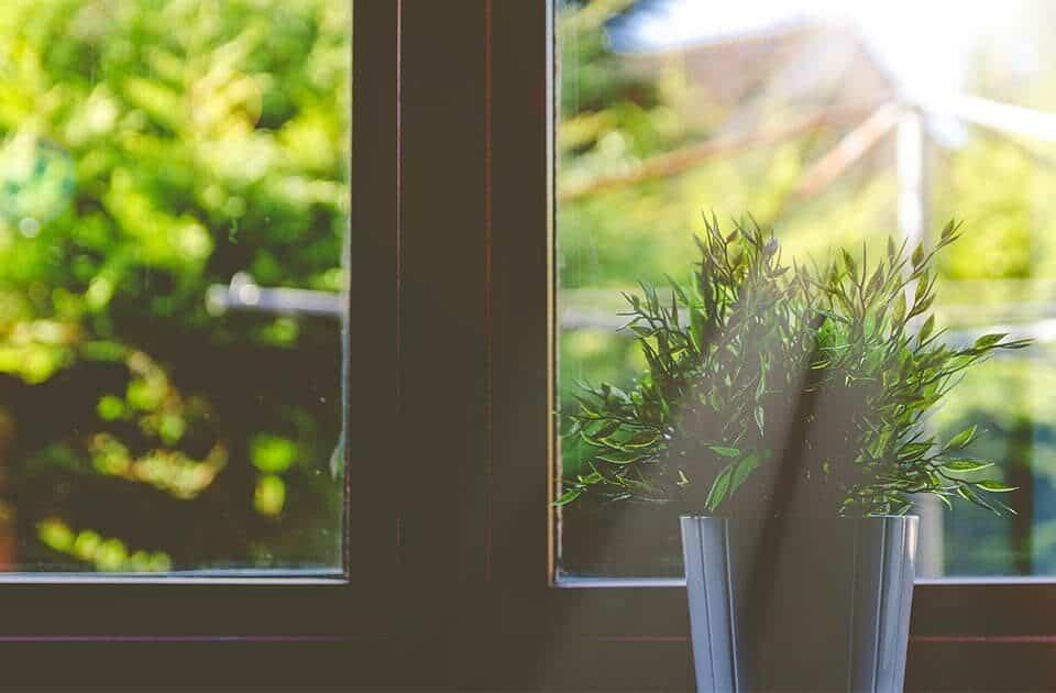 Spring garden design tips
