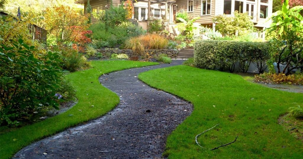 Tidy garden lawn in spring time
